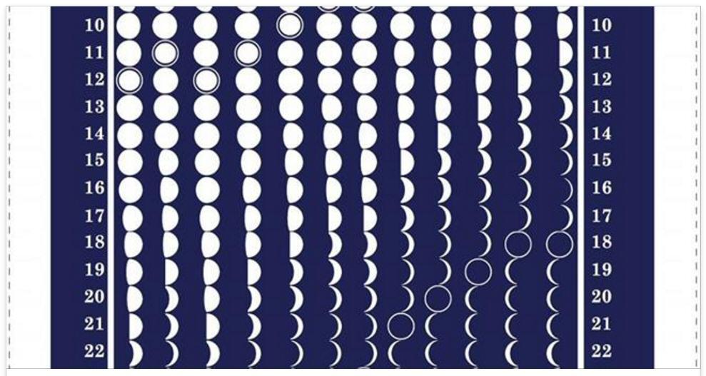 Moon Tea Towel close up